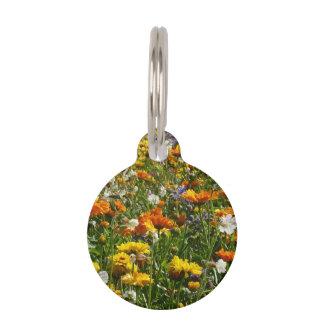 La primavera florece el prado placa para mascotas