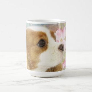 La primavera florece la taza arrogante del perro