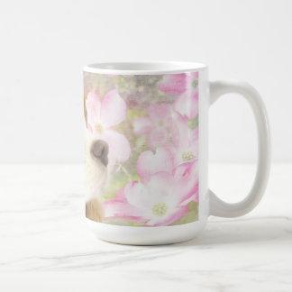 La primavera florece la taza arrogante del perro d