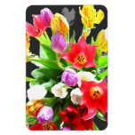 La primavera florece tulipanes imanes de vinilo