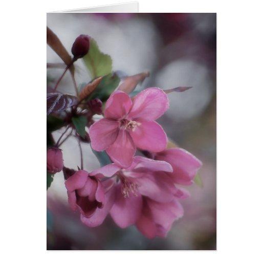 La primavera florece ~ una tarjeta de nota por KNa