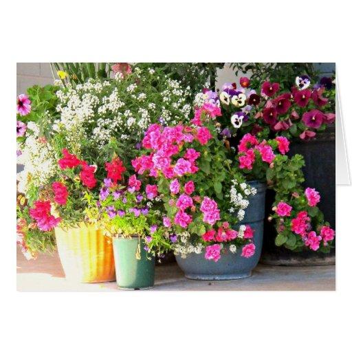 ¡La primavera ha llegado! Tarjeta De Felicitación