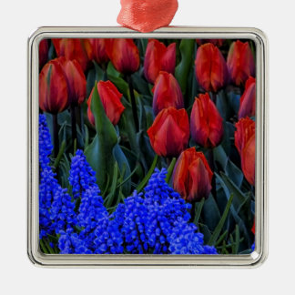 La primavera hermosa del tulipán florece la foto adorno cuadrado plateado