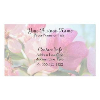 La primavera rosada florece las tarjetas de visita