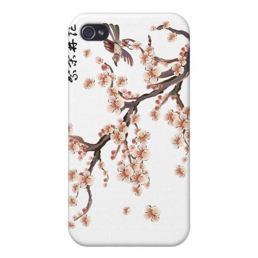 """La """"prosperidad florece"""" las flores de cerezo chin iPhone 4 cobertura"""