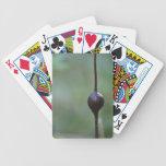 La protuberancia de la naturaleza cartas de juego