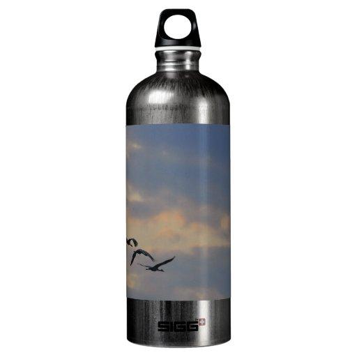 La puesta del sol Cranes la botella de la libertad