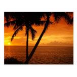 La puesta del sol de la llave de la Florida Tarjetas Postales