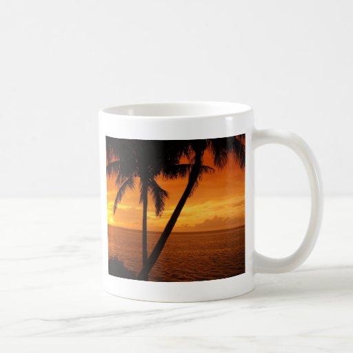 La puesta del sol de la llave de la Florida Taza De Café
