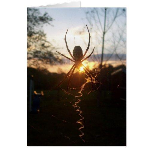 La puesta del sol tarjeta