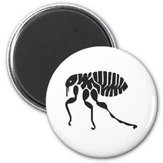 La pulga fastidia el insecto imán redondo 5 cm