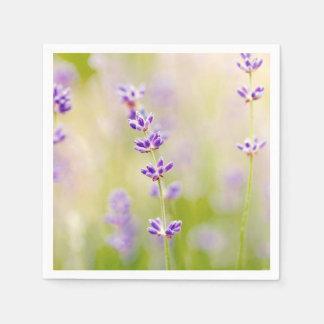 la púrpura bonita florece calmar natual de la servilleta desechable