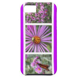 La púrpura del color funda para iPhone SE/5/5s