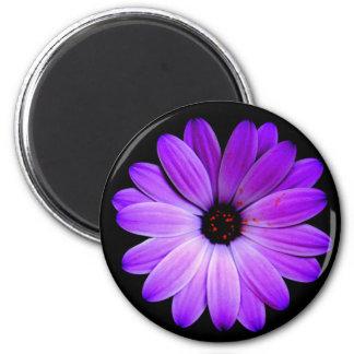 La púrpura del color imán redondo 5 cm