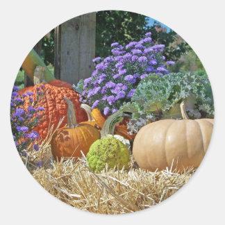 La púrpura del otoño de la caída de las calabazas  etiquetas redondas