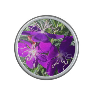 La púrpura florece el altavoz de Bluetooth