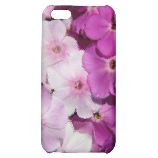 La púrpura florece el iPhone 4