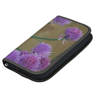 La púrpura florece la frecuencia intermedia 1 planificador