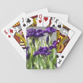 La púrpura irisa la foto floral barajas de cartas
