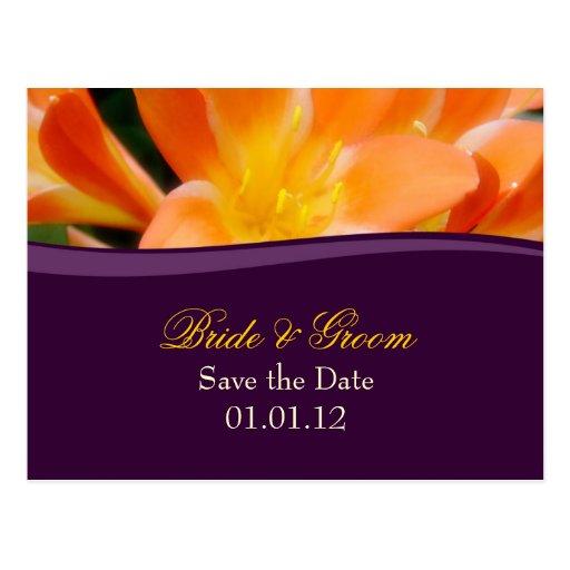 La púrpura y el naranja ahorran la postal de la