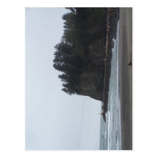 La Push Beach Postcard