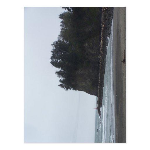 La Push Beach Postcard