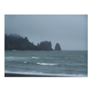 La Push Beach, WA Postcard