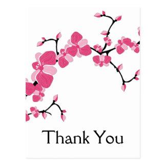 La rama de árbol de la flor de cerezo le agradece  postales
