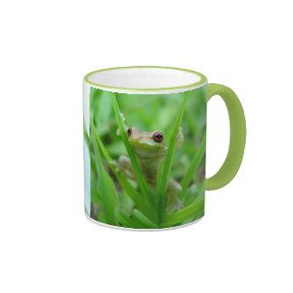 La rana arbórea del bebé con rojo observa la taza