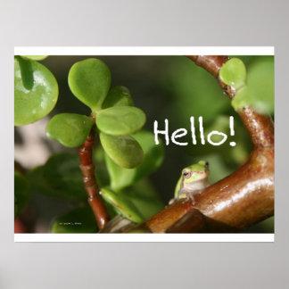 ¡La rana arbórea linda dice hola! ¡Estilo anfibio! Poster
