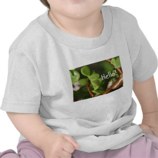 ¡La rana arbórea linda dice hola! ¡Estilo anfibio! Camiseta