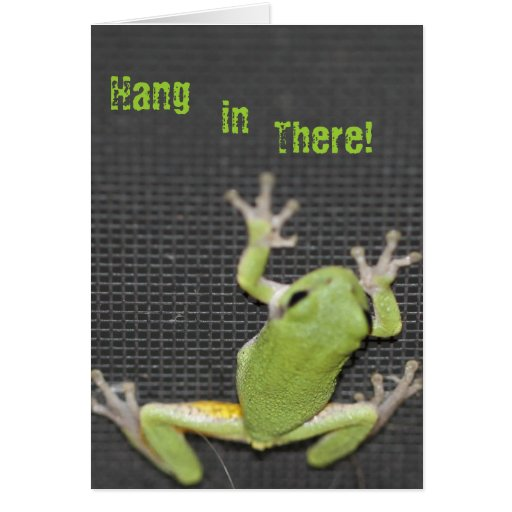 La rana arbórea verde chistosa consigue la tarjeta