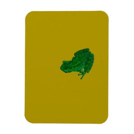 La rana colorzed verde contra amarillo mira para imán flexible