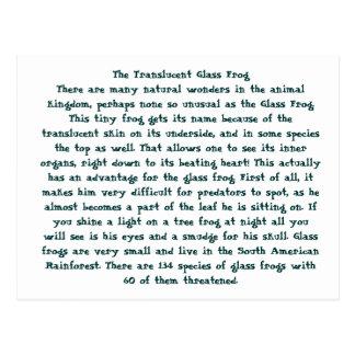 La rana de cristal translúcida postal