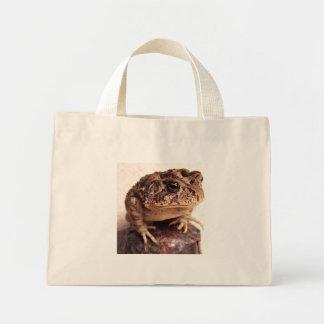 La rana del sapo en la mano martilló la foto de co bolsa lienzo