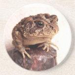 La rana del sapo en la mano martilló la foto de co posavasos manualidades