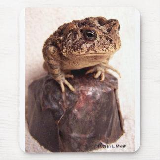 La rana del sapo en la mano martilló la foto de co mousepads