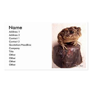 La rana del sapo en la mano martilló la foto de tarjetas de visita