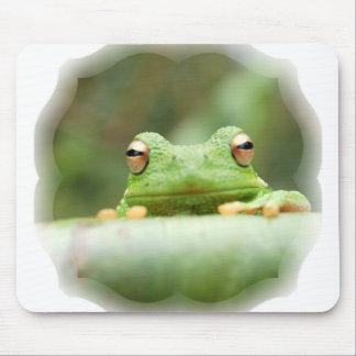 La rana observa el cojín de ratón alfombrillas de ratón