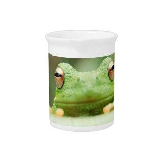La rana observa la jarra