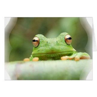 La rana observa la tarjeta de felicitación