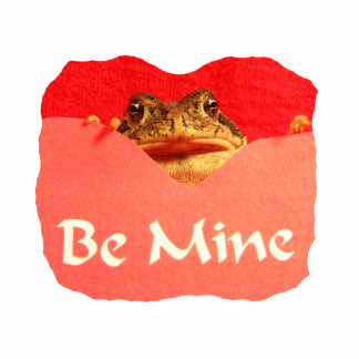 La rana sea tarjeta del día de San Valentín del re Escultura Fotografica
