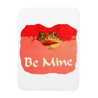 La rana sea tarjeta del día de San Valentín del re Imán De Vinilo
