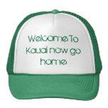 La recepción a Kauai ahora va a casa gorra