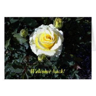 La recepción detrás carda con los rosas amarillos felicitaciones