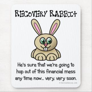 La recesión tiene que terminar eventual tapete de ratones