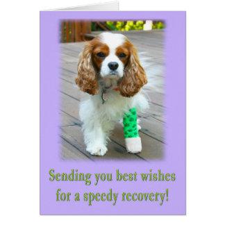 La recuperación rápida consigue la tarjeta bien de