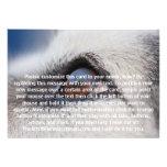La reflexión de la luna en el ojo del perro comunicado personal