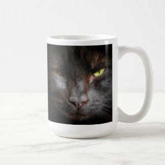 La regla de los gatos negros quiere luchar sobre taza