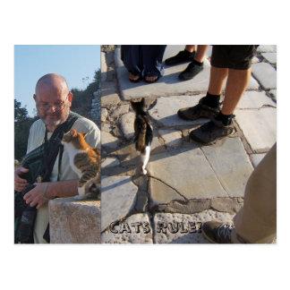 La regla del gato en la postal de Ephesus